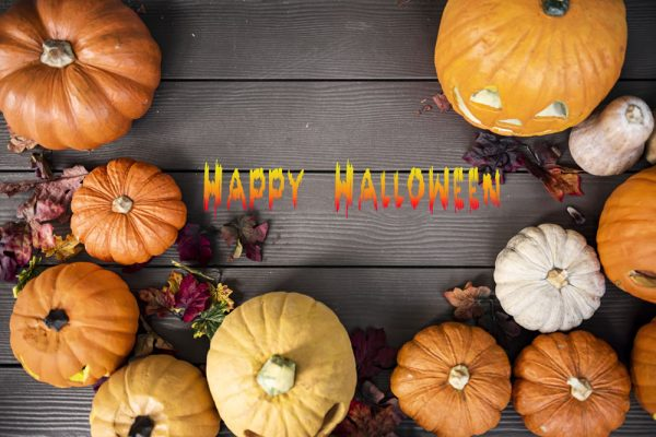 Happy Halloween - The Complete We Co Design